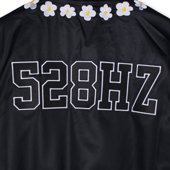 s-AO2998-09
